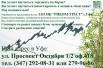 Котировка ценных бумаг на бирже